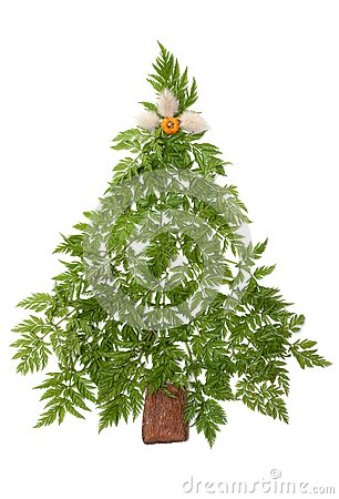 Decorative cristmas spruce