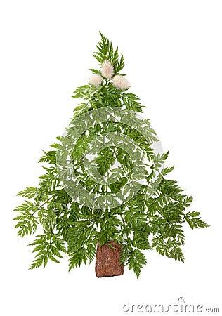Decorative cristmas spruce