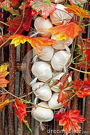 Decorative garlic braid