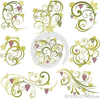 Decorative grape illustration