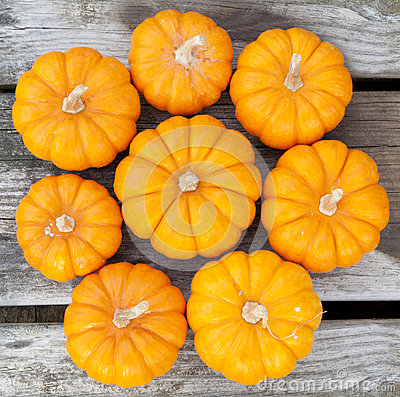 Decorative pumpkins