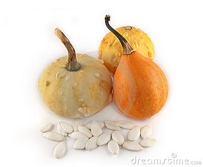 Decorative pumpkins isolated