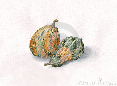 Decorative pumpkins watercolor painting