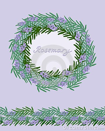 Decorative  rosemary frame and seamless border
