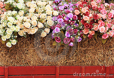 Decorative roses with the straw bales