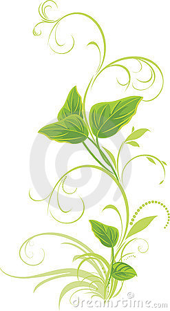 Decorative sprig with leaves isolated on the white