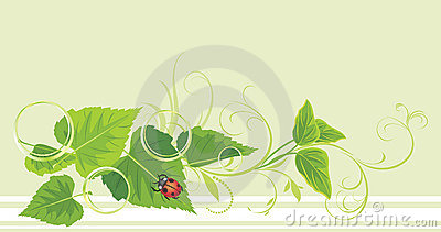 Decorative sprig with leaves, ladybird and bubbles