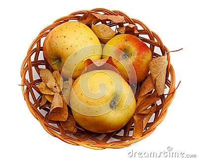 Decorazione di autunno con le mele e le foglie in un for Decorazione a canestro