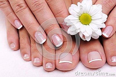 Dedos do pé fêmeas Ell-preparados