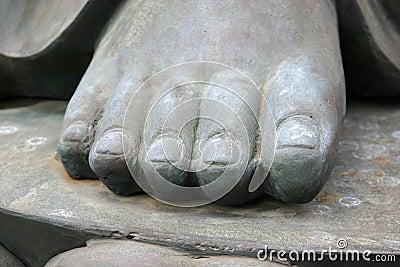 Dedos do pé