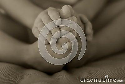 Fingeres y dedos del pie del bebé