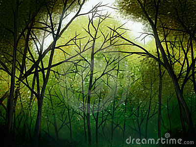 Deep Forest - Digital Painting