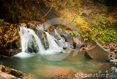Deep forest waterfall in the Carpathians
