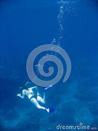 Deep snorkel el nido palawan philippines
