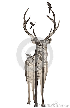 Free Deer 2 Royalty Free Stock Images - 34161979