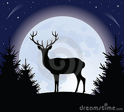 Free Deer And The Moon. Royalty Free Stock Photography - 11613867