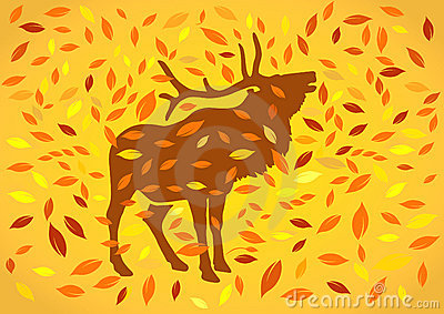 Deer at autumnal