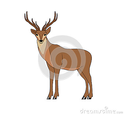 Deer Stock Vector - Image: 39519834