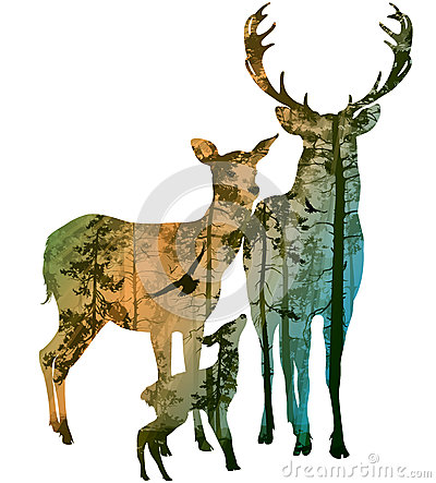 Free Deer Family Royalty Free Stock Image - 47700236