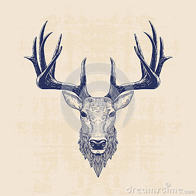 Free Deer Head Royalty Free Stock Images - 56916529