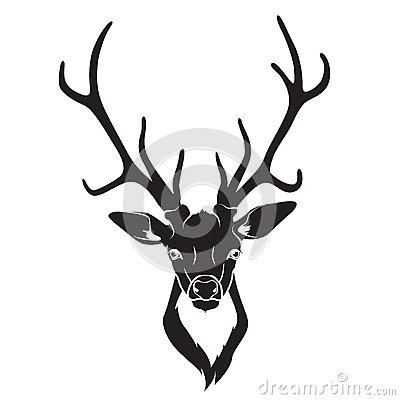 Deer head isolated stock photos image 34751733 - Dessin tete de cerf ...