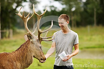 Deer with man