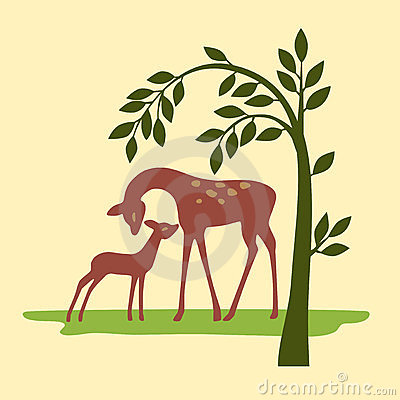 Deer on nature