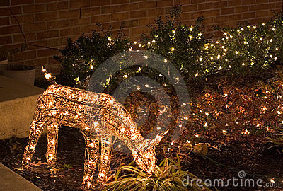 Deer (outdoor christmas lights)