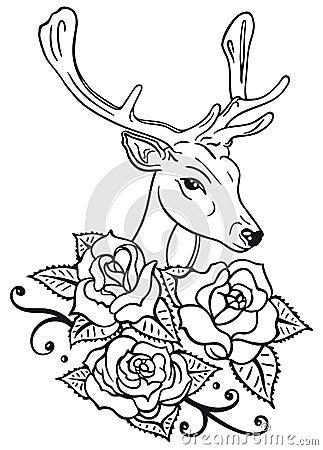 Deer, roses