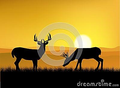 Deer silhouuette