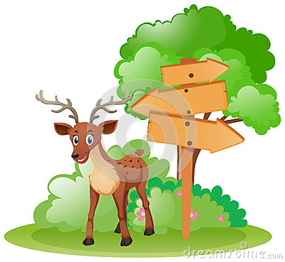 Deer standing by the wooden signs Vector Illustration