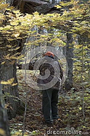On deer track 1