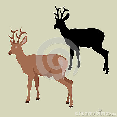 Deer vector illustration style Flat set Vector Illustration