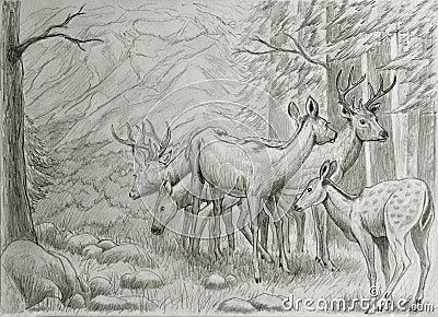 Deers family