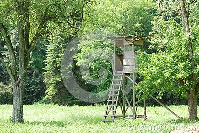 Deerstand overlooking a Field in the Black Forest Stock Photo