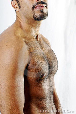 Defined Hairy Chest Royalty Free Stock Image Image 2843426