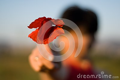 Defocused woman with a poppy in her hand