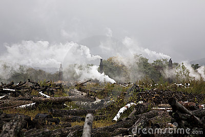 Deforestation And Environmental Pollution Royalty Free Stock Photo ...