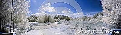 180 degree infrared panorama