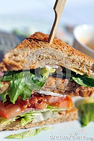 Free Deli Sandwich Stock Image - 13188071