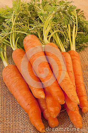 Delicious bunch of fresh and crunchy carrots