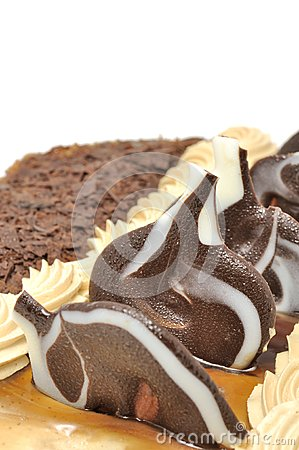 Delicious Cake with Chocolate Decorations