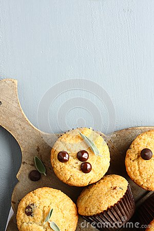 Free Delicious Homemade Gluten Free Muffins With Chocolate Drops Royalty Free Stock Photo - 44382945