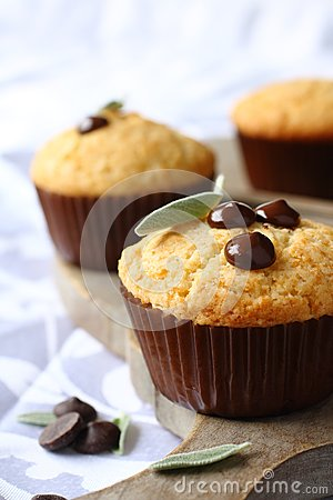 Free Delicious Homemade Gluten Free Muffins With Chocolate Drops Royalty Free Stock Photos - 44644448