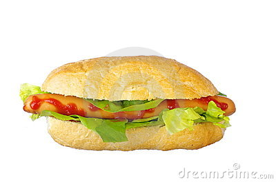 Delicious Hot-Dog with salad