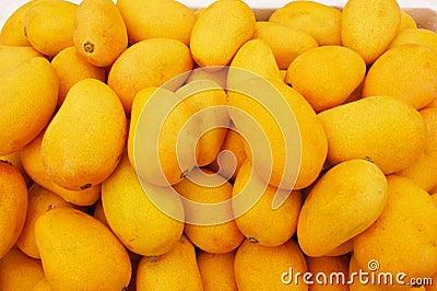 Delicious mango