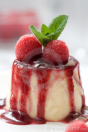 Free Delicious Panna Cotta Dessert Royalty Free Stock Photography - 2385937
