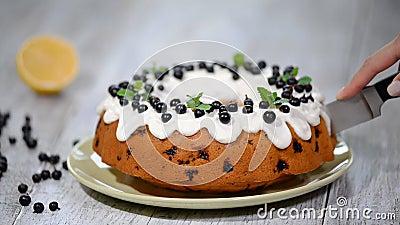 Delikatny smakowity tort z czarnym rodzynkiem zbiory