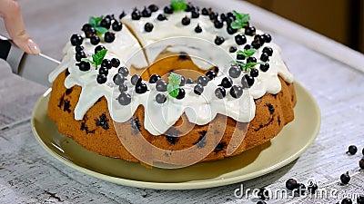 Delikatny smakowity tort z czarnym rodzynkiem Ciąć tort z czarnym rodzynkiem zbiory wideo