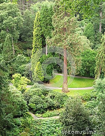 Dell in Bodnant Garden
